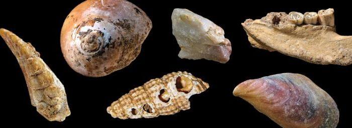 Доколко неандерталците са се приспособили към живот край морето