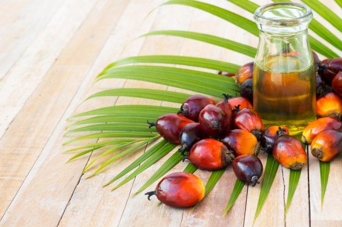 Какво представлява палмовото масло и защо се среща практически навсякъде?