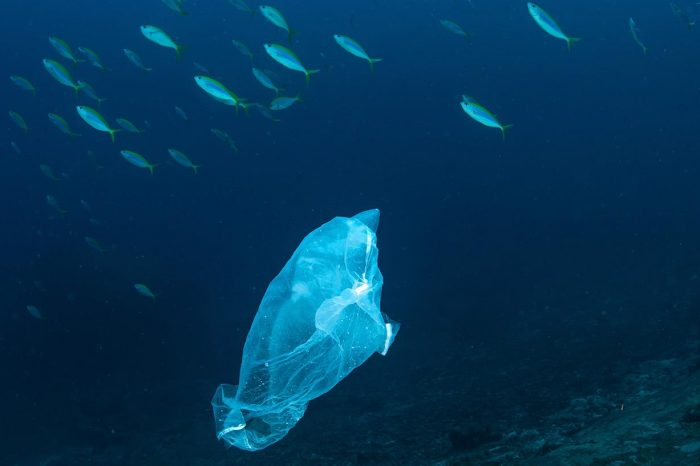 Очаква се замърсяването с пластмаса в океаните да се увеличи 3 пъти до 2040 г., възможността да се овладее риска е до 80%