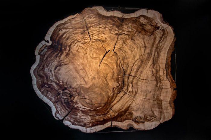 Рекалибриране на радиовъглеродните датировки може да измести епохата на някои праисторически образци със стотици години