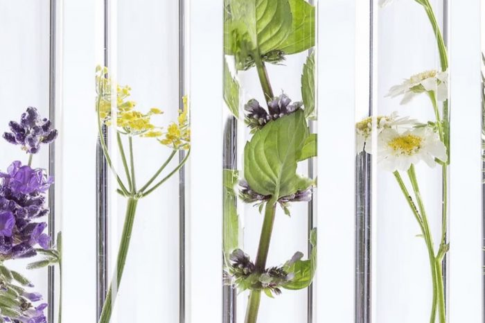 Експлоатация на странични продукти от ароматни растения за разработване на нови козметични продукти и хранителни добавки