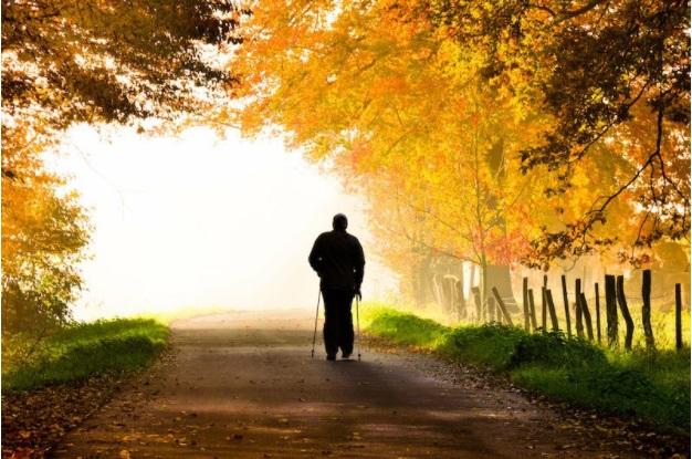 Жизнената среда може да бъде ключова за дълголетието
