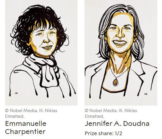 Нобеловата награда за химия 2020 г.
