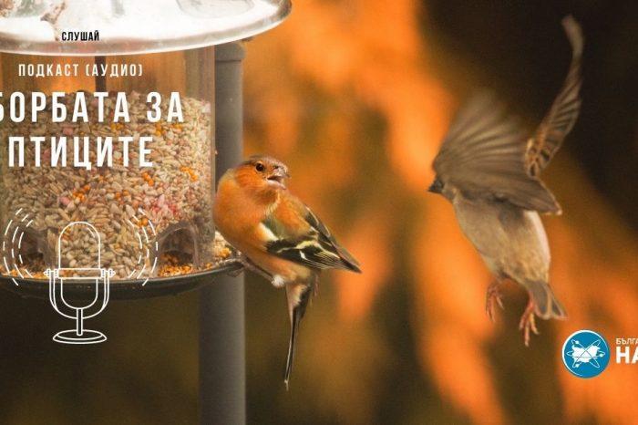 [АУДИО] Борбата за птиците