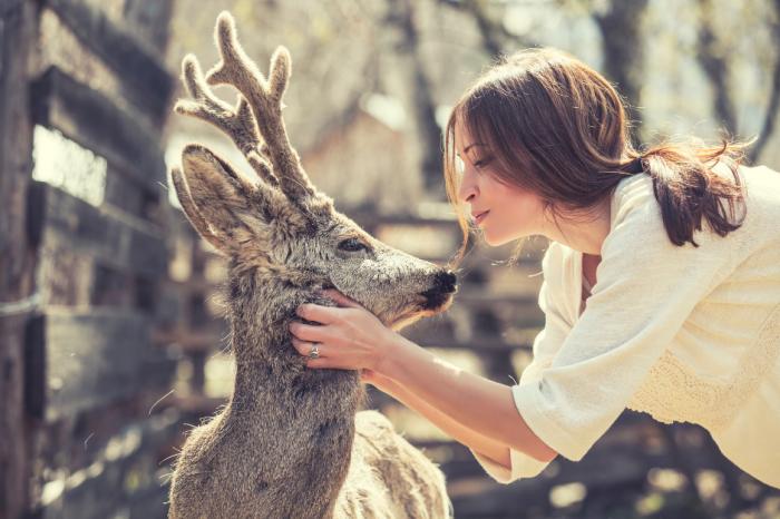 Да говориш с животните