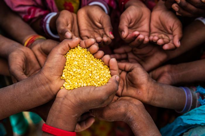Климатът може да подкопае усилията за продоволствена сигурност
