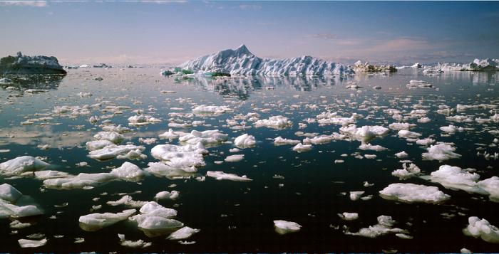 Пластмасови частици от дрехи, замърсяват почти всички арктически морета