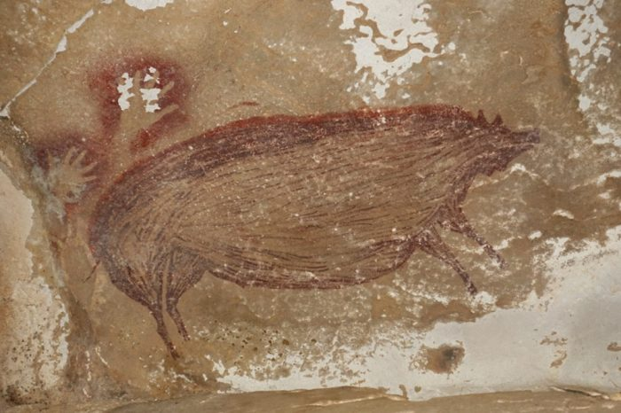 Пещерни рисунки на брадавичести прасета, може да са най-старите от този тип
