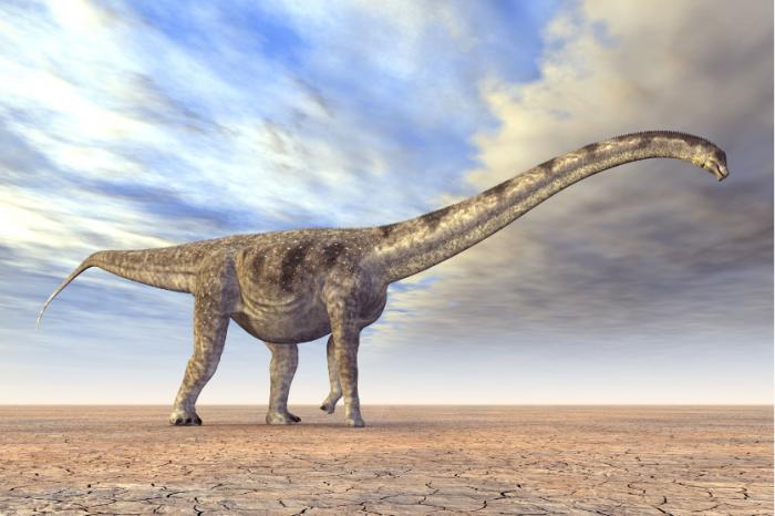 Гигантски динозавър, открит в Аржентина, може да се окаже най-голямото сухоземно същество