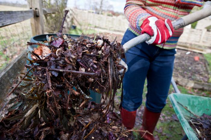 Как да наторявате безплатно вашата градина
