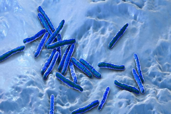 Европейският геном е бил изменен от туберкулозата