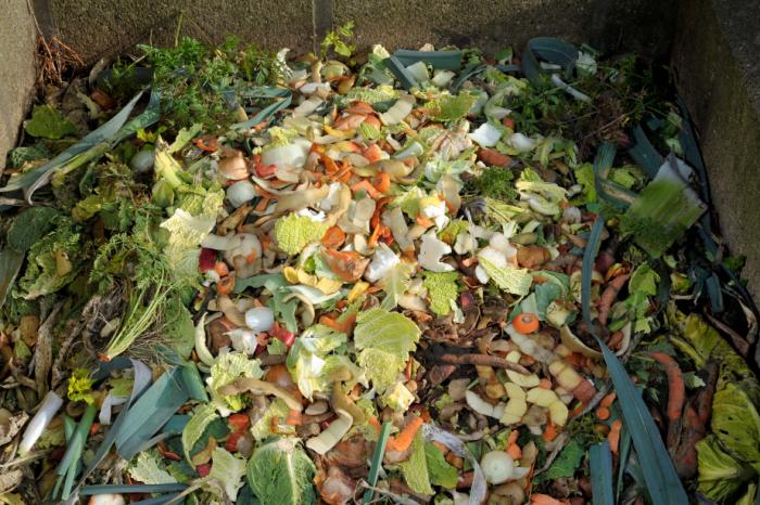 Хранителните отпадъци остават огромен проблем по целия свят