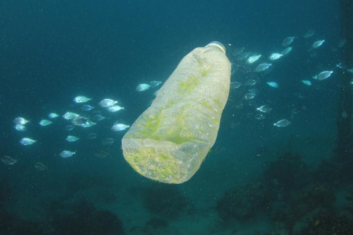 Навикът на човечеството за бързо хранене изпълва океана с пластмаса