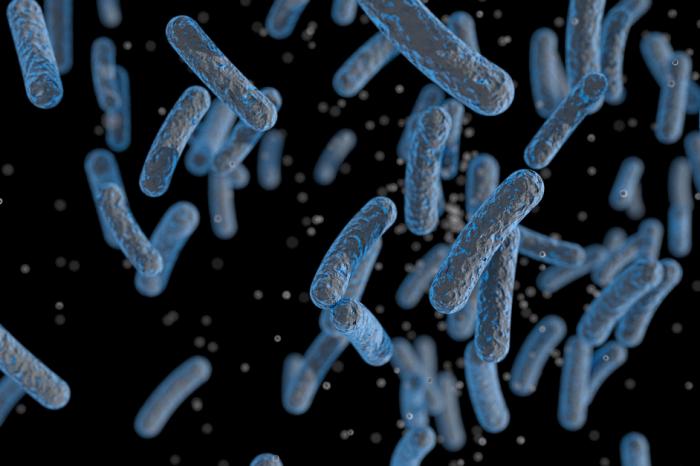 Някои бактерии стават устойчиви на антибиотици - ето как вирусите и ваксините биха могли да помогнат