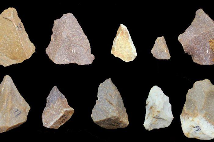 Каменни сечива от Индия сочат, че хората може да са напуснали Африка по-рано отколкото се предполага