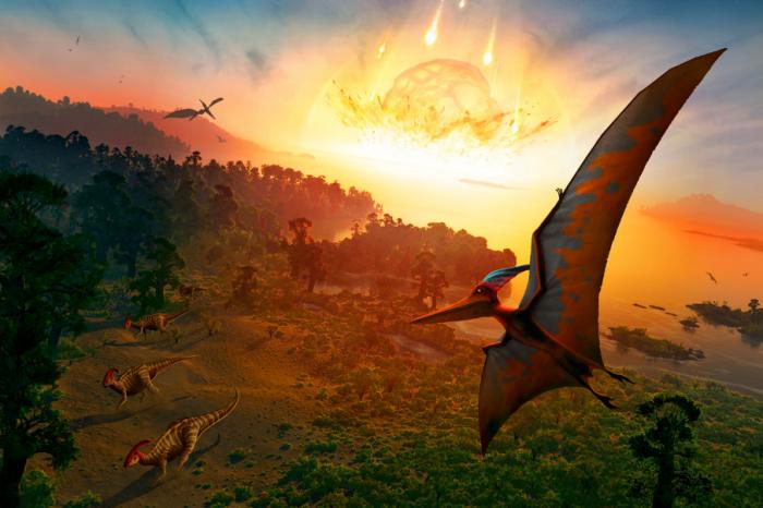 Астероидът, убил динозаврите е оформил съвременния облик на амазонската джунгла