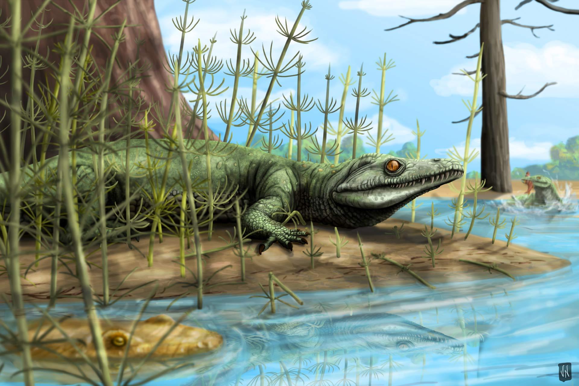 Открито е древно крокодилоподобно влечуго в Бразилия - Teyujagua paradoxa