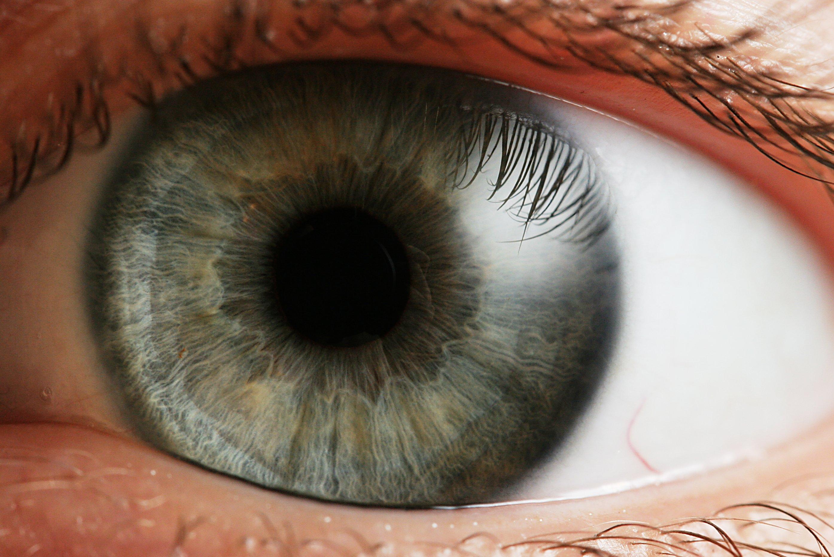 Сляпа жена възстановява зрението си след противоречива терапия със стволови клетки
