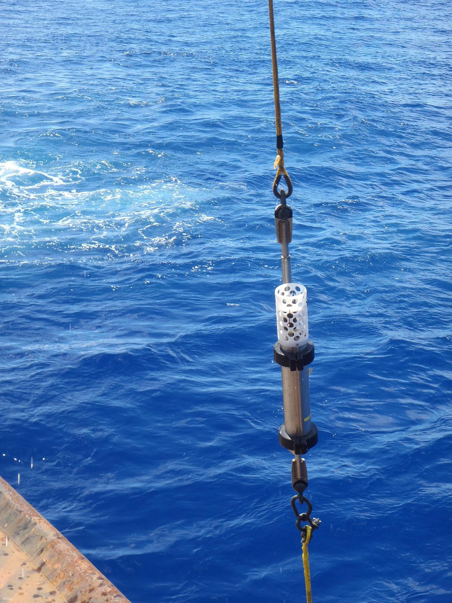 Учени са записали звуци от дъното на Марианската падина