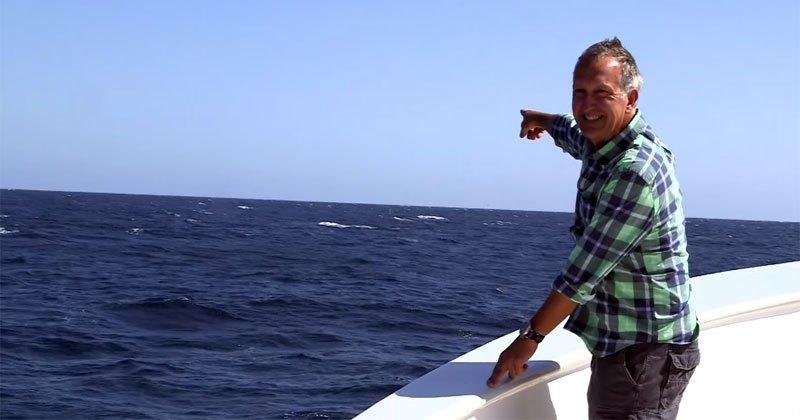 Видео: Син кит прекъсва ТВ водещ точно, когато говори колко е трудно да се види син кит