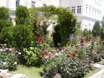 Университетските ботанически градини ще работят по нов проект от септември 2015 г.