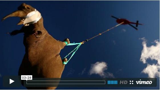 Операция летящ носорог
