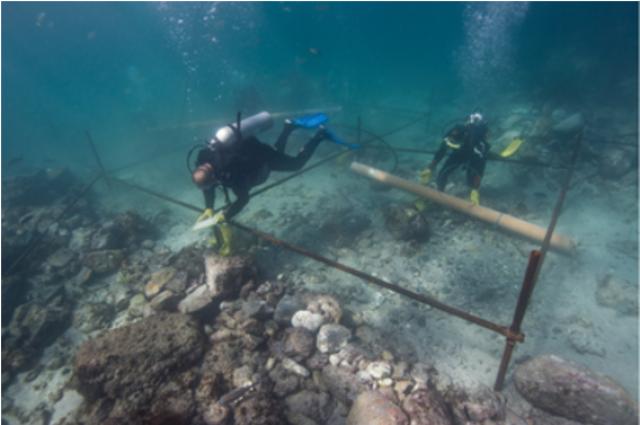 500-годишно корабокрушение, от ерата на Великите географски открития, край бреговете на Оман